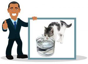 Fontaine à eau pour chat NPet