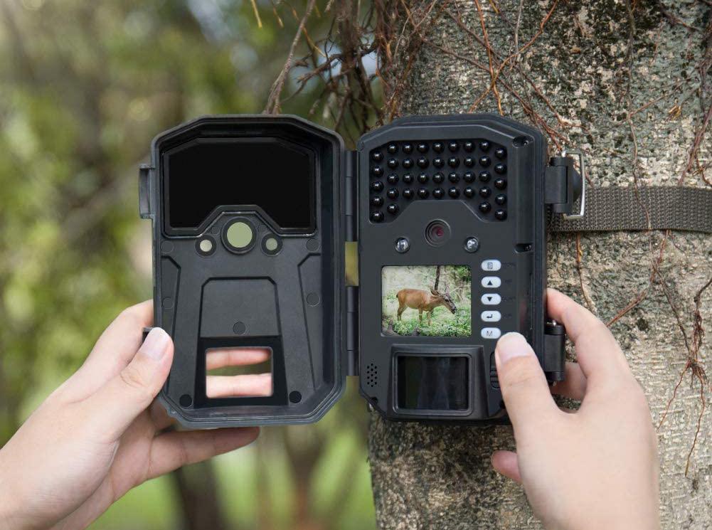 bien choisir une caméra de chasse