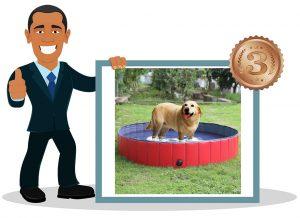 Piscine pour chien Pedy