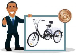 Vélo 3 roues adulte Ridgeyard