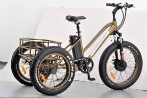 vélo 3 roues haut de gamme