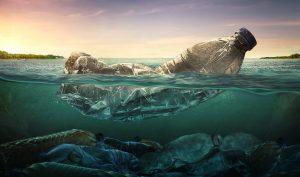 impact écologique bouteilles eau